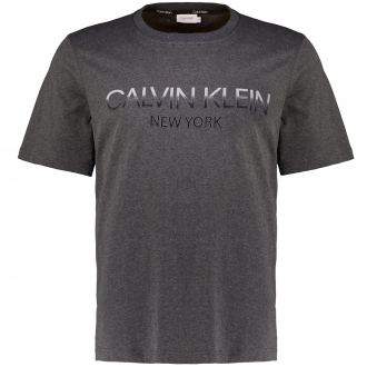 T-Shirt mit Logo-Flockprint grau_P4A | 3XL