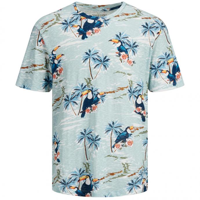 Luftiges T-Shirt aus Bio-Baumwolle mit Tropical-Alloverprint mint_ETHER | 4XL