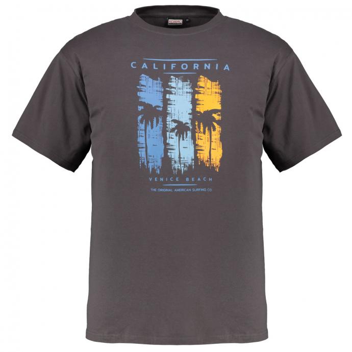 "T-Shirt mit großem ""California""-Frontprint grau_710 | 12XL"