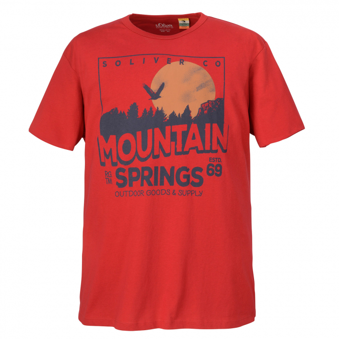 "T-Shirt mit auffälligem ""Mountain Springs""-Print rot_3660 | 3XL"